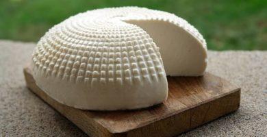 hacer queso fresco