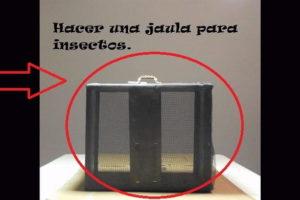 Jaula para insectos.