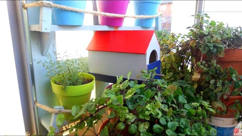 casas de madera para pajaros pintadas